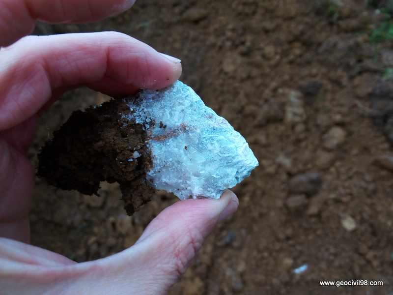 Fragmento de caliza de la Formación Escalada