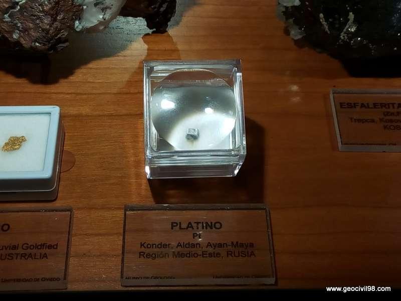 Platino del Museo de Geología