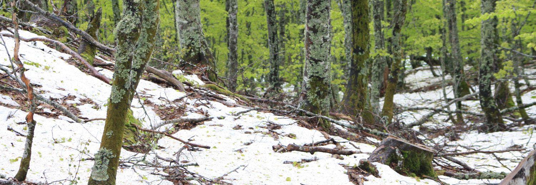 Estudios geológicos, geotécnicos y ambientales en Asturias